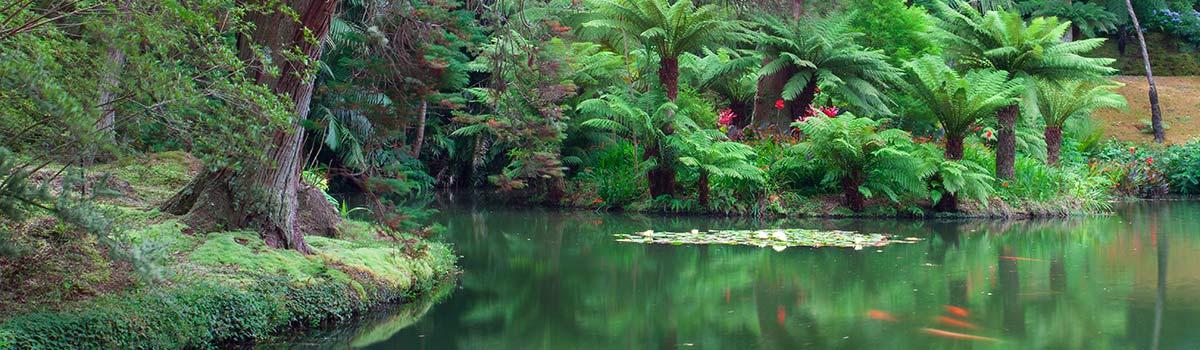 Azores-Terra-Nostra-Garden-1200w